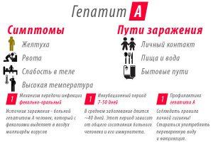 Пути заражения болезнью Боткина
