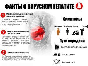 Пути передачи болезни Боткина