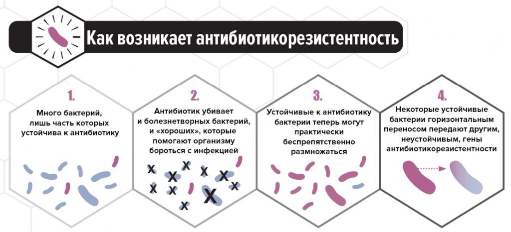 антибиотикорезистентность