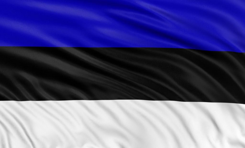 врачом в Эстонию