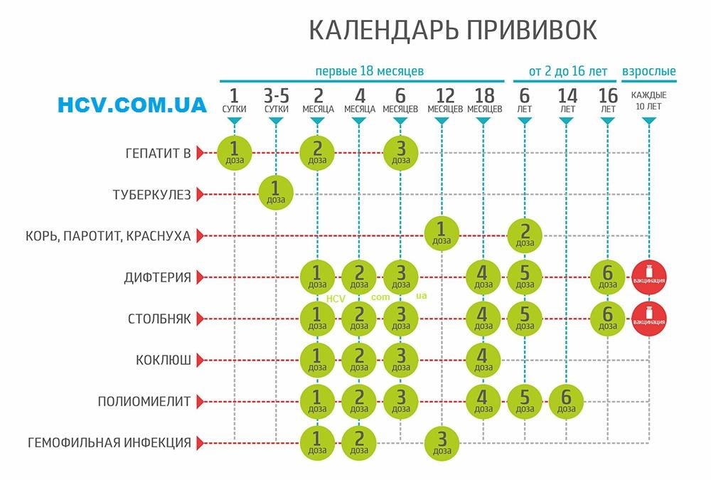 Действующий календарь прививок в Украине
