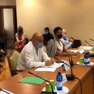 Народные депутаты заслушали план действий МОЗ Украины на 2021