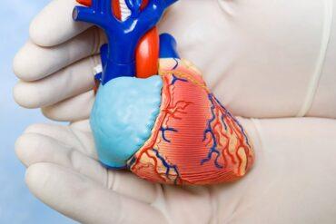 Транскатетерная имплантация аортального клапана: какая антитромбоцитарная терапия наиболее эффективна?