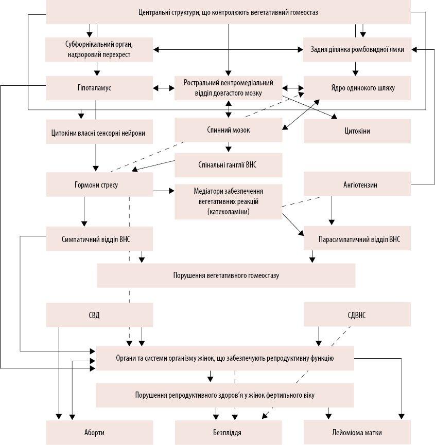 Вегетативный гомеостаз: влияние на репродуктивное здоровье женщин